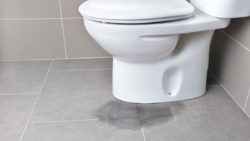 How Do You Know If Your Toilet Has a Leak?